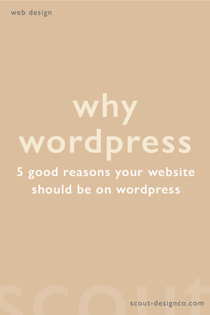 Why you should use WordPress for you website